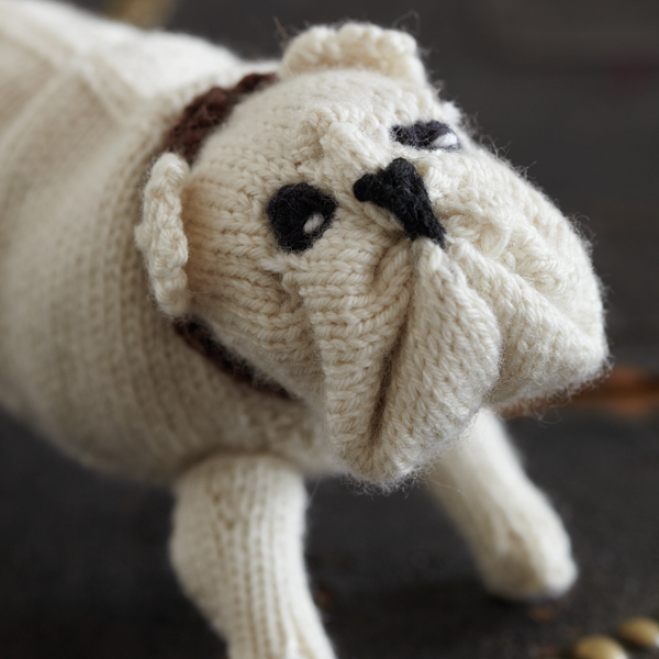 Knitting Patterns For Dogs Book : Best in Show Books: Knit Your Own Animal English Bulldog Pattern